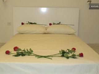 Charming Modern central Achuza 3 room - Haifa vacation rentals