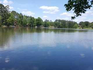 South Atlanta Lake House 15 miles S of Atlanta - Atlanta vacation rentals
