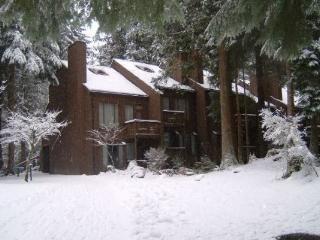 #41 Condo with private sauna, wifi, video stream! - Glacier vacation rentals