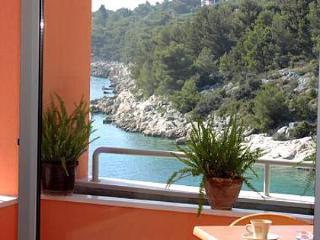 5094 A101(4+1) - Bilo - Primosten vacation rentals