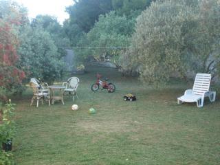 5541 A1(5+2) - Dobropoljana - Dobropoljana vacation rentals