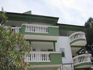 5641 A4(4) - Sveti Filip i Jakov - Sveti Filip i Jakov vacation rentals