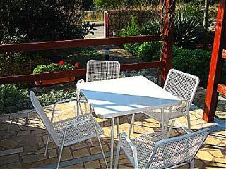 00805SFIJ  A1(2+1) - Sveti Filip i Jakov - Sveti Filip i Jakov vacation rentals