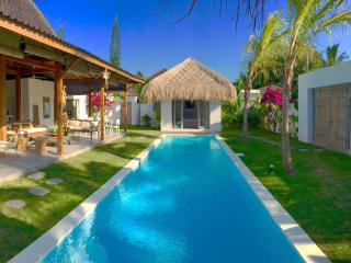 4 BR Villa with pool 200 meters from Kudeta beach - Seminyak vacation rentals