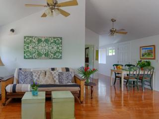 Green Turtle House in the middle of all beaches on - Paia vacation rentals
