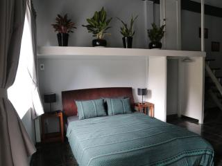 Classic Saigon Apt - Park view, CBD - Ho Chi Minh City vacation rentals