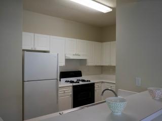 Classic, Beautiful Apartment with Balcony - Atlanta vacation rentals