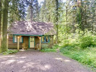 Quintessential cabin in the woods with stunning views - Rhododendron vacation rentals