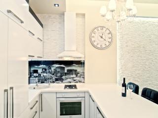 New Luxus Apartment City Centre Chisinau-Moldova! - Chisinau vacation rentals