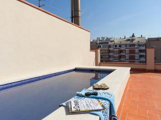 DELUXE apartments, shared TERRACE & SWIMMING POOL - Barcelona vacation rentals