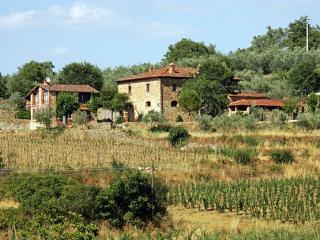 Casa Loggia 1 Tuscan rental near Arezzo - Italy - Pergine Valdarno vacation rentals