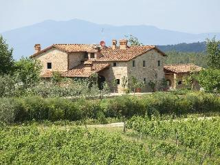 Casa Mercatale Holiday villa rental in Mercatale - Chianti - Tusdany - Mercatale vacation villa - San Casciano vacation rentals