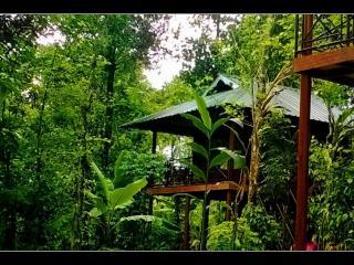 Monsoon Retreats - Thekkady vacation rentals