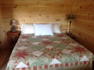 One room knotty pine cabin - Thornton vacation rentals