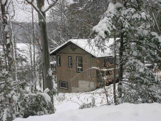 Barnes Lake Retreat - Val-des-Monts vacation rentals