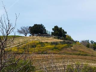 Sea Stone Ridge - Paso Robles vacation rentals