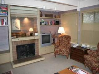 Dollar Meadows Condo 1382 - Image 1 - Sun Valley - rentals