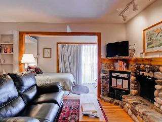 Snowrun Condominiums 5 - Ketchum vacation rentals