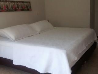 Large Condo with Pool - WALK TO LLERAS :) - Medellin vacation rentals