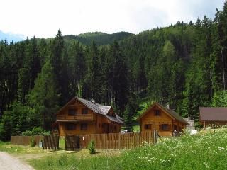 WILI HUNTER Chalet Deer - Donovaly vacation rentals