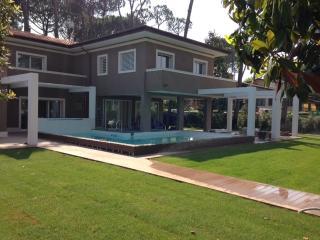 villa Gianni - Forte Dei Marmi vacation rentals