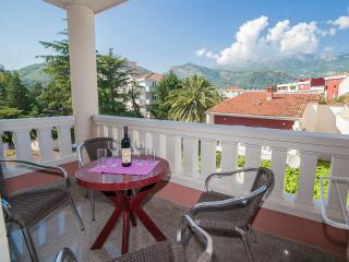 Apartments Dimić Ellite - One Bedroom Apartment with Balcony 1 - Budva vacation rentals