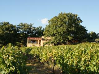 Villa 8p prvate pool in the vine yards of Vaison-le-Romaine Vaucluse - Vaison-la-Romaine vacation rentals