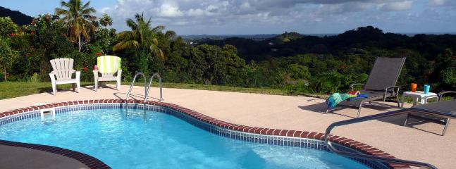 Private Swimming Pool w/ BBQ, fridge, sink, tables & chairs - #1 Rated Rental in PR! Coquis Hideaway @ El Yunque - Rio Grande - rentals