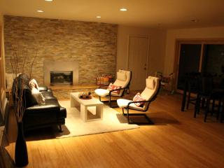 Luxury Dream Vacation Home on the beach - Traverse City vacation rentals