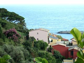 Monterosso, apt. close to the beach - Monterosso al Mare vacation rentals
