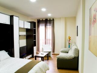 Gran Via Studio 5 - Castrojimeno vacation rentals