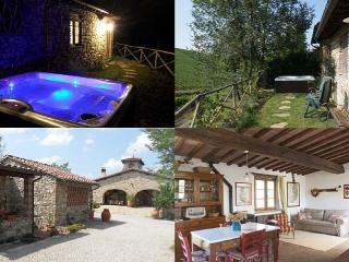 Vichiaccio - Il Fienile - San Casciano in Val di Pesa vacation rentals