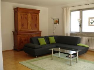 Vacation Apartment in Sankt Ingbert - 969 sqft, comfortable, bright, active (# 8544) - Sankt Ingbert vacation rentals