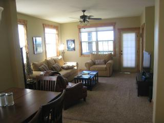 Family Friendly Gateway to Winter Skiing - Driggs vacation rentals