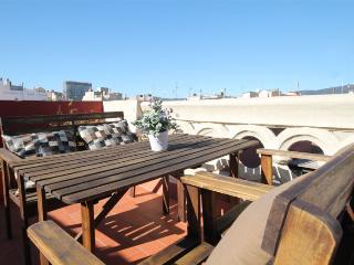 Goya Loft-penthouse with terrace - Barcelona vacation rentals