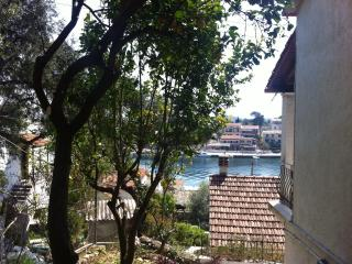 Villa Perris Front Studio with patio - Kassiopi vacation rentals