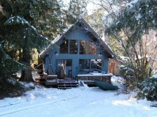 #53 Cozy cabin with an outdoor hot tub and wifi! - Glacier vacation rentals