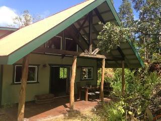 Brand New Ohia Tree House with Loft - Pahoa vacation rentals