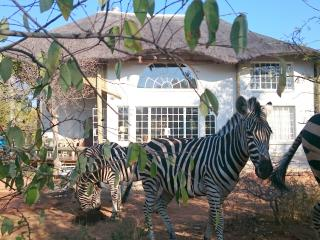 Hyena House 4180 - Marloth Park vacation rentals