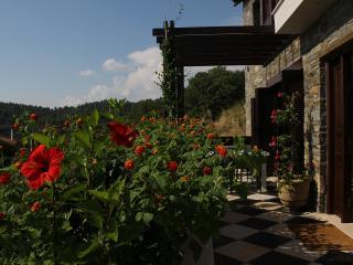 Epic Seaview StoneVilla in Sithonia - Parthenonas vacation rentals