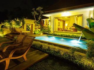 Ubud Pool Luxury Villa 1BR - Ubud vacation rentals