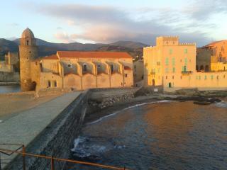 APARTMENT IN SYMBOLIC  CATLE IN COLLIOURE - Collioure vacation rentals