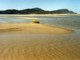 Bongo's Beach Bungalow - Smiths Lake vacation rentals