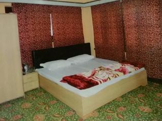 Holiday Home - Srinagar vacation rentals