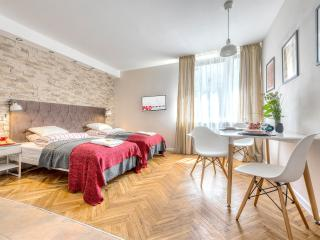 Climatic Studio LIPOWA - Warsaw vacation rentals