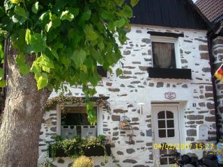 Ferienhaus Neuenrade - Neuenrade vacation rentals