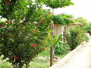 Mwana House - Nungwi vacation rentals