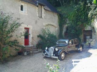 charmant gite médiéval proche chateau chenonceau - Chenonceaux vacation rentals