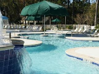 A Vacation Paradise - Golfing, Tennis, Shopping! - Hilton Head vacation rentals