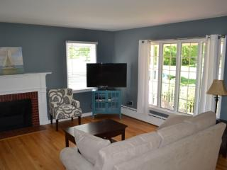 Charming 3 Bedroom Centrally Located Village Home - Skaneateles Lake vacation rentals